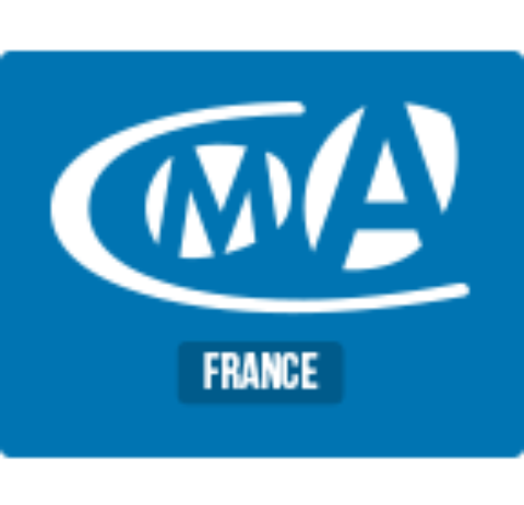 (POURVU) CLIENT FINAL PARIS Consultant SAP FI CO H/F